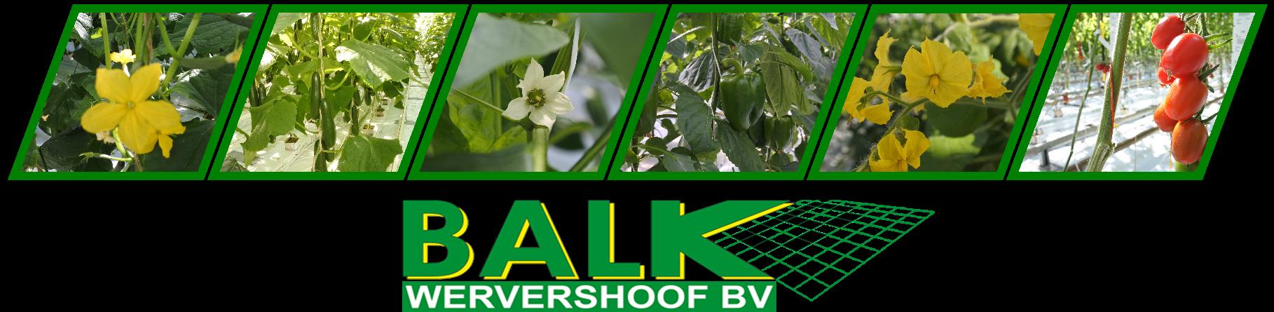 Balk Wervershoof BV